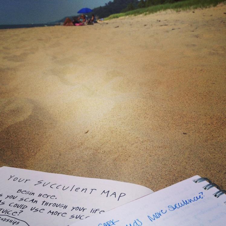 saugatuck beach