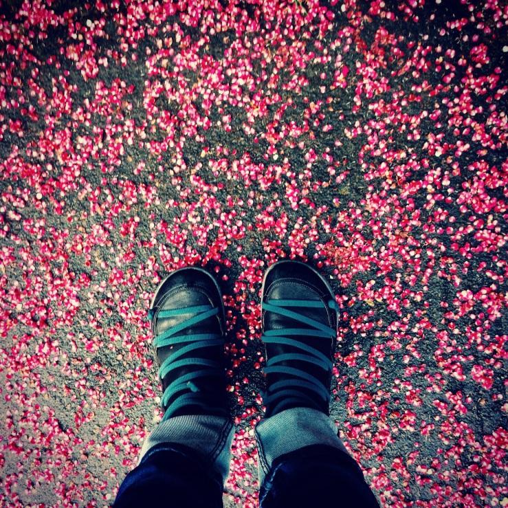 Shoes & Petals